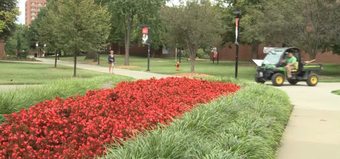 UofL's Ground Crew includes about 12 staff members who work year-round to ensure the entire campus looks good.
