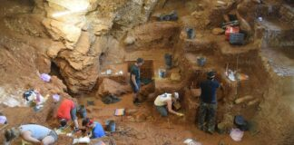 View of the excavation of the early modern human (foreground) and Neanderthal layers (background) in Lapa do Picareiro. Photo by Jonathan Haws.