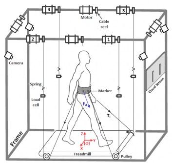 Tethered Pelvic Assist Device (TPAD)