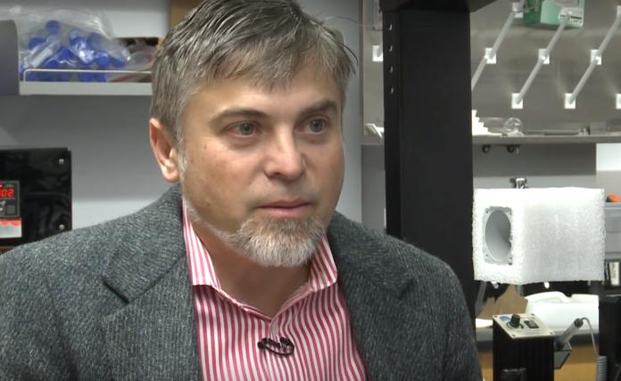 Speed School's Dan Popa is leading research on microbots.