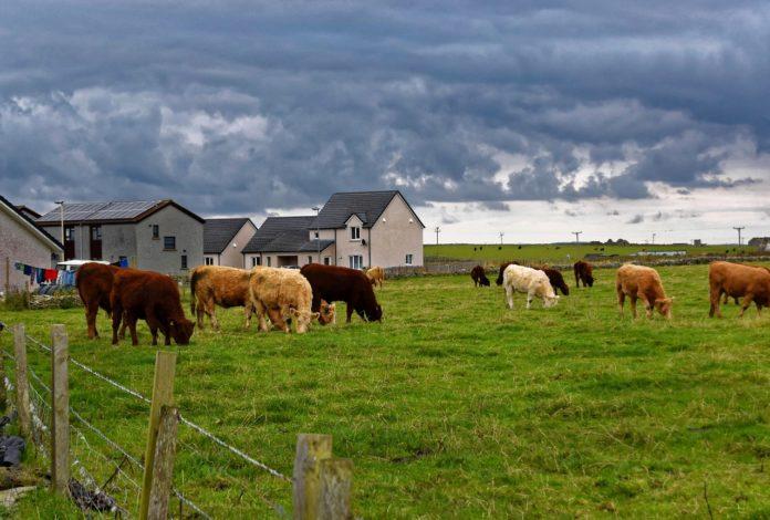 A stock image of a farm in rural Kentucky.